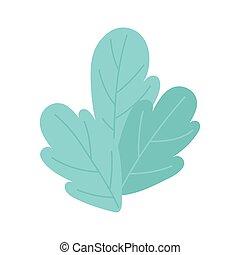 liście, natura foliage