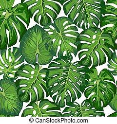 liście, próbka, tropikalny