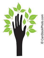 liście, ręka