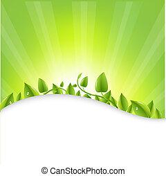 liście, sunburst, zielony