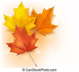 liście, tło, jesień