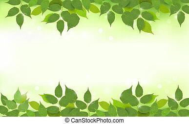 liście, tło, natura, zielony