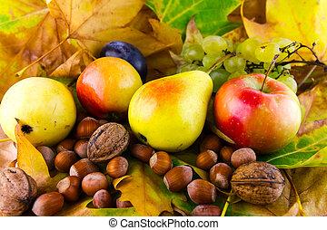 liście, upadek, owoce