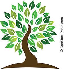 logo, drzewo