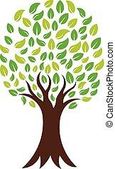 logo, wektor, zielony, natura, drzewo