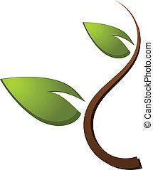 logo, zielone drzewo, natura