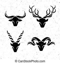 logos, rogaty, animals.
