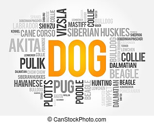 ludowy, collage, słowo, chmura, najbardziej, pies, dziedziczy się, spis
