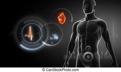 ludzkie serce, rentgenowski, skandować