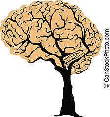 mózg, drzewo