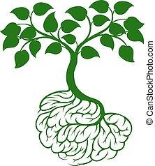 mózg, drzewo, podstawy