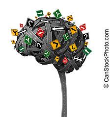 mózg, kierunek