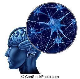 mózg, medyczny symbol, ludzki