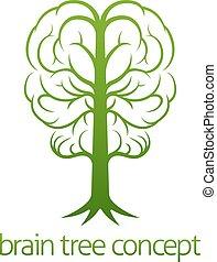 mózg, pojęcie, drzewo