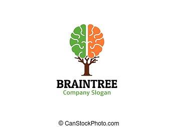 mózg, projektować, drzewo