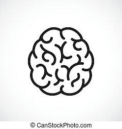 mózg, wektor, ikona