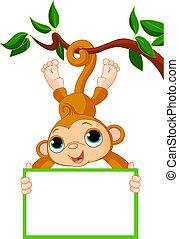 małpa, dzierżawa, drzewo, niemowlę, czysty