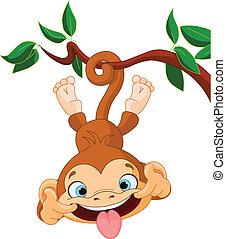 małpa, hamming