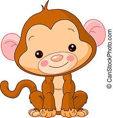 małpa, zabawa, zoo.