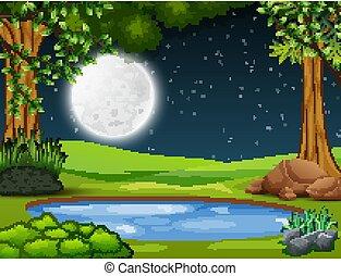 mały, środek, krajobraz, las, noc, staw