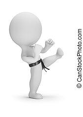 mały, karate, 3d, -, ludzie