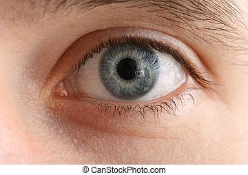 makro, szczelnie-do góry, oko, ludzki