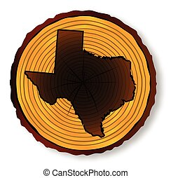 mapa, sekcja, koniec, texas, budulec