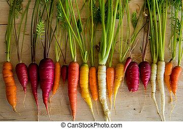 marchew, organiczny