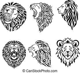 maskotka, logo, cielna, twarz, komplet, lew