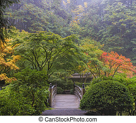 mglisty, rano, japoński ogród