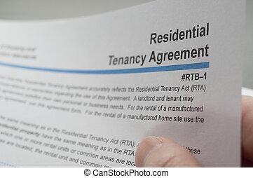 mieszkaniowy, tenancy, czytanie, porozumienie