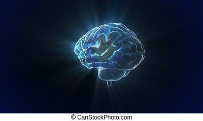 migotać, mózg, obracać