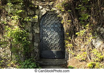 misterium, drzwi, las