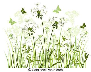 mniszki lekarskie, tło, trawa, kwiatowy
