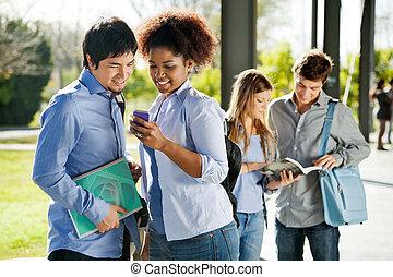 mobilephone, studenci, tekowa wiadomość, czytanie, campus