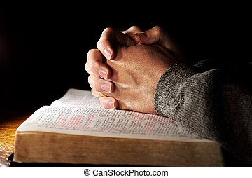 modląci ręki, na, święta biblia