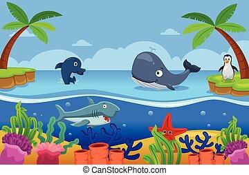 morskie życie, ocean