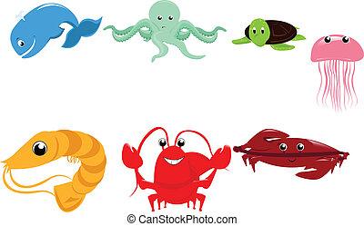 morskie zwierzęta, rysunek