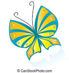 motyl, barwny