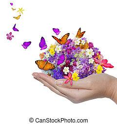 motyl, kwiat, fidybus, dużo, zawiera, ręka, kwiaty