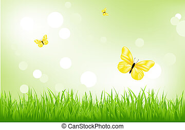 motyle, trawa, zielony, żółty