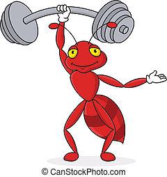 mrówka, silny, litera, rysunek, czerwony