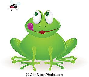mucha, żaba