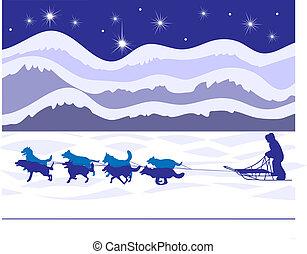 musher, światło gwiazd, sled psy