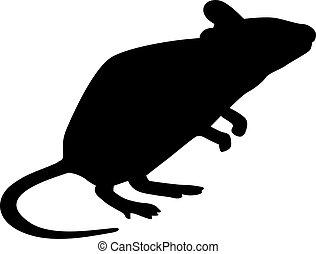 mysz, sylwetka, reputacja