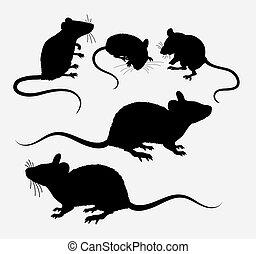 mysz, szczur, sylwetka, zwierzę