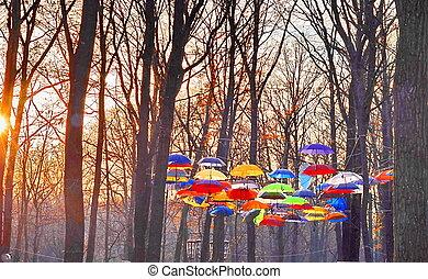 na, niebo, parasole, wielobarwny