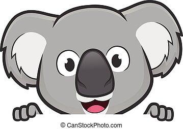 na, patrząc, czysty, dzierżawa, poznaczcie deskę, koala
