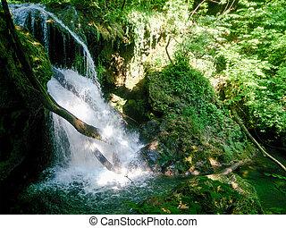 natura krajobraz, drzewa, river., las, rzeka, góry