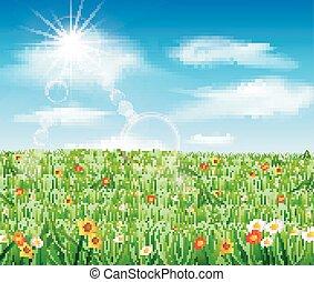 natura, tło, trawa, zielony